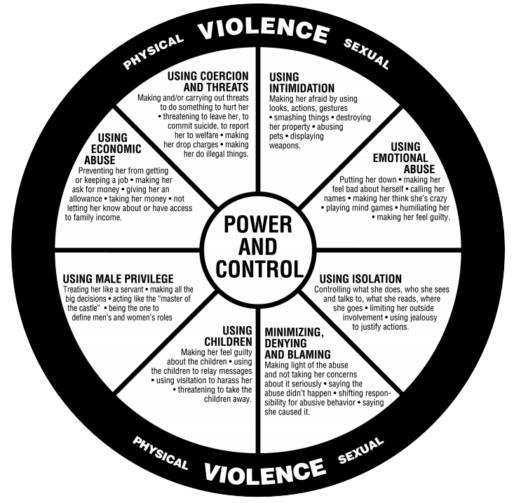 Physical Violence Infographic